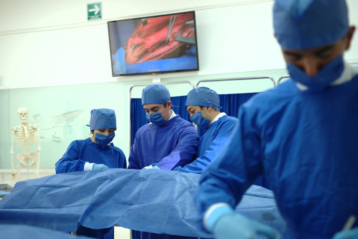 Laboratorio de Anatomía Humana, Centro de Estudios y Tecnología Aplicada a las Ciencias de la Salud