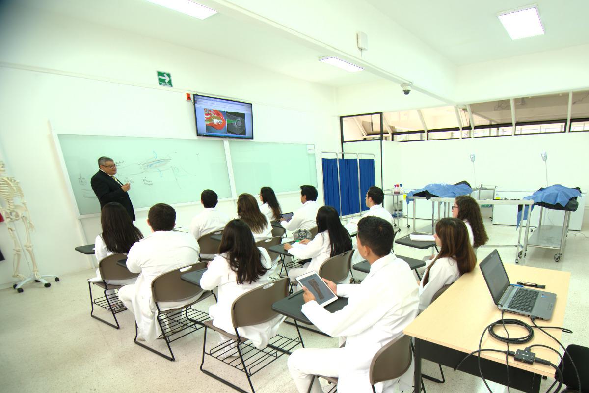 3 / 13 - Centro de Estudios y Tecnología Aplicada a las Ciencias de la Salud