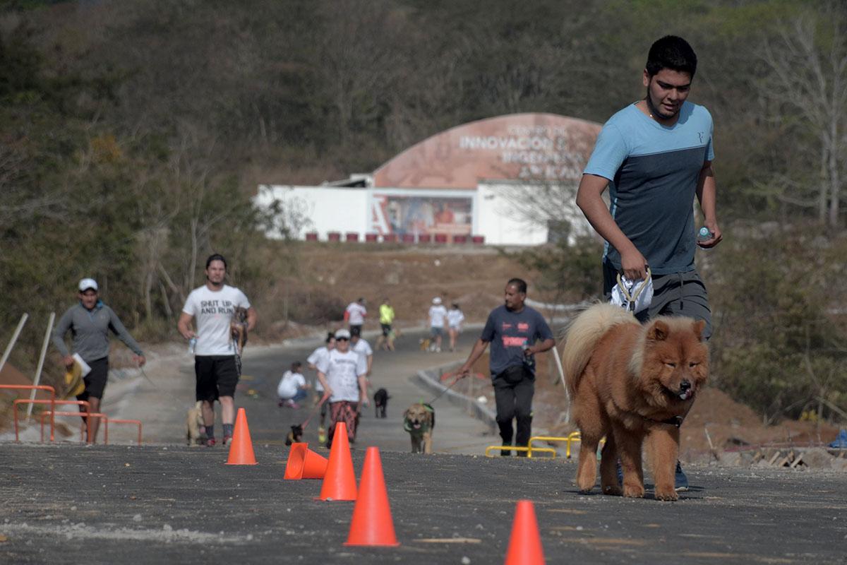 14 / 36 - Corriendo con mi Mejor Amigo: Una Carrera con Causa