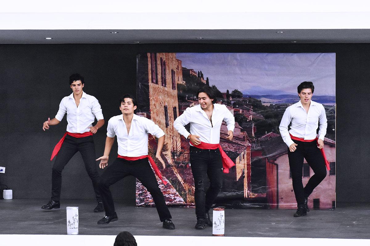 6 / 14 - Obra de Teatro: El Ingenioso Hidalgo Don Quijote de la Mancha