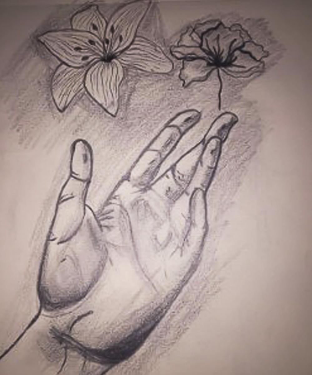 Elsie Lama Cardozo, Dibujo