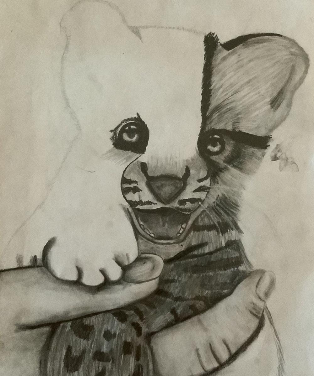 Jimena Trujillo Rodríguez, Dibujo