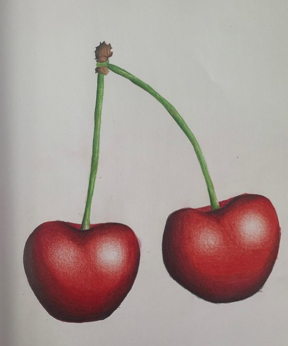 Rosa Isela Mondragón, Dibujo