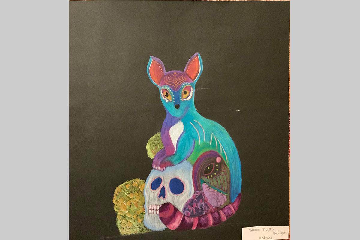 Taller de Dibujo - Ximena Trujillo Rodriguez