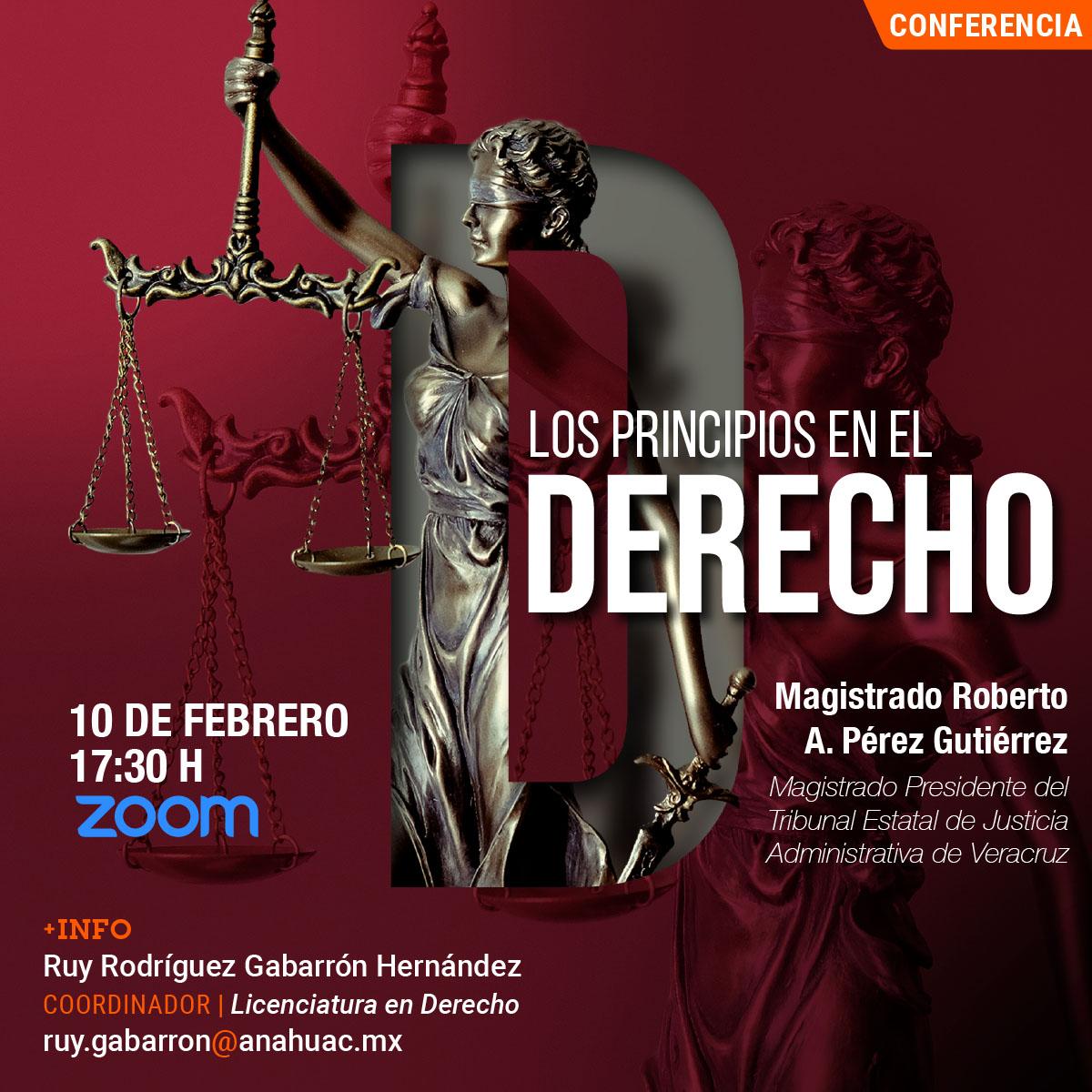 Los Principios en el Derecho