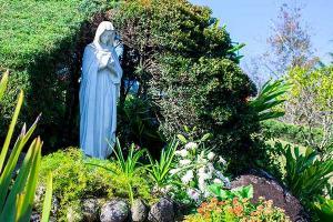 La Virgen de Guadalupe: Acompañante en todo momento en Nuestra Vida Universitaria