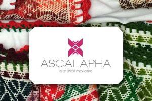 Ascalapha, proyecto textil y de gestión de marca