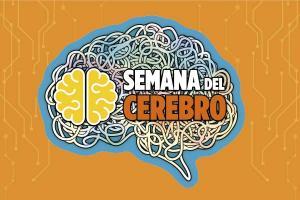 Semana del Cerebro