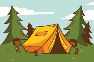Campamentos en USA