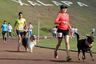 Corriendo con mi Mejor Amigo: Una Carrera con Causa