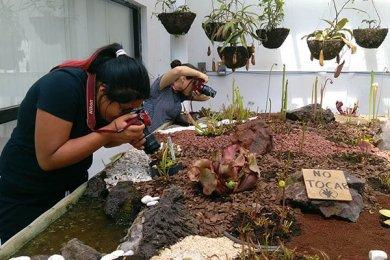 Alumnos de fotografía de visita en el Jardín Botánico