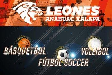 Básquetbol ABE, Fútbol y Voleibol CONADEIP