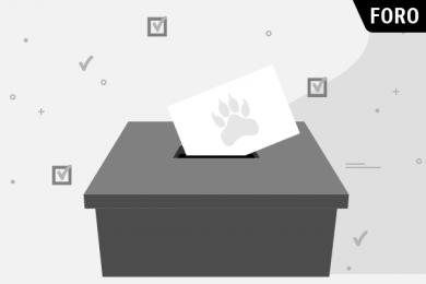 Jóvenes Unidos por la Democracia